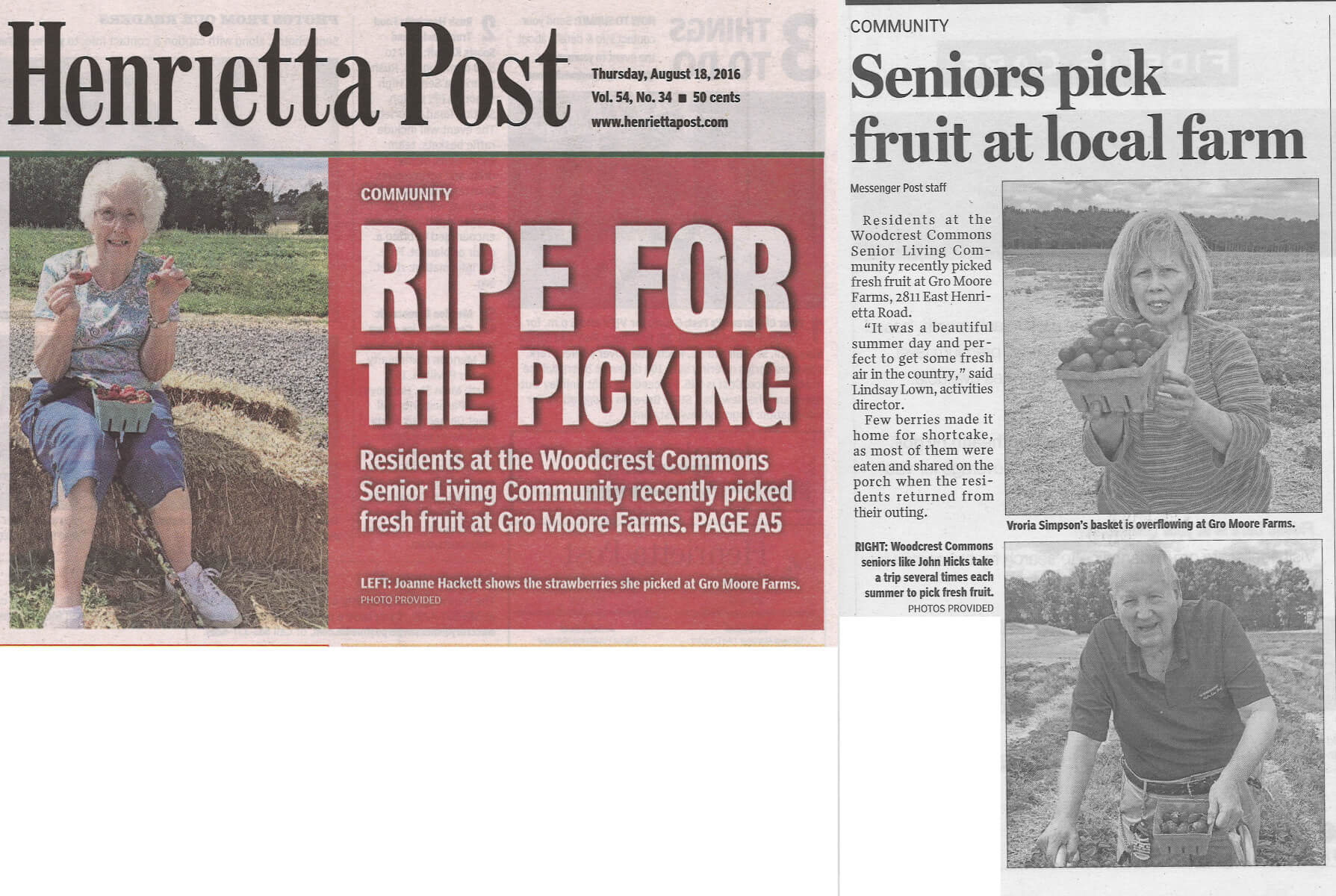 Westwood Commons residents pick Strawberries, August 18, 2016 story in the Henrietta Post