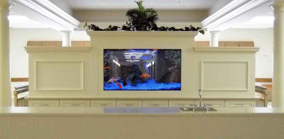 Dayspring Of Wallace DePaul Senior Living Fish Tank
