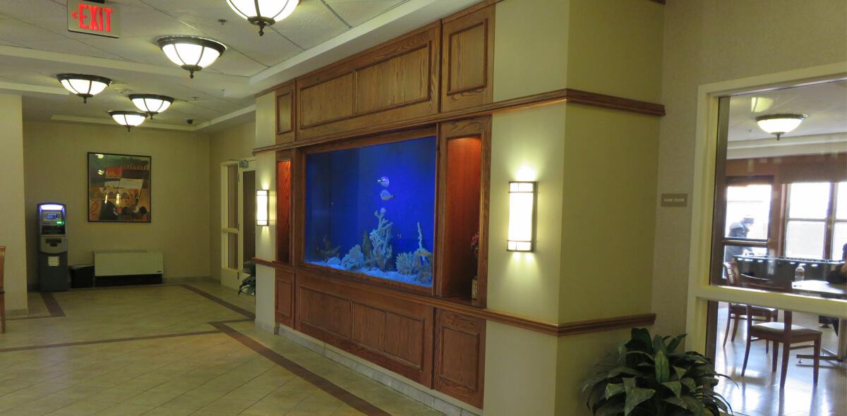 DePaul Parkside Community Residence Single Room Occupancy Program Fish Tank