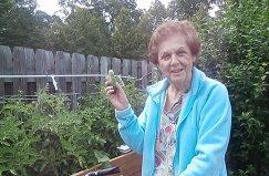 Twelve Oaks Gardening 2