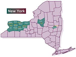 DePaul York Map
