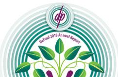 DePaul 2019 Annual Report