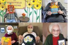 DePaul Flowers Collage